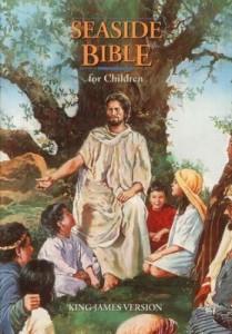 KJV Children's Seaside Hard Cover Bible